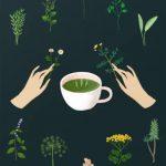 Groene thee en mondgezondheid