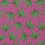 Cannabis en mondgezondheid